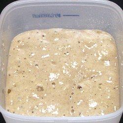 自家製酒種酵母を使ったパン種